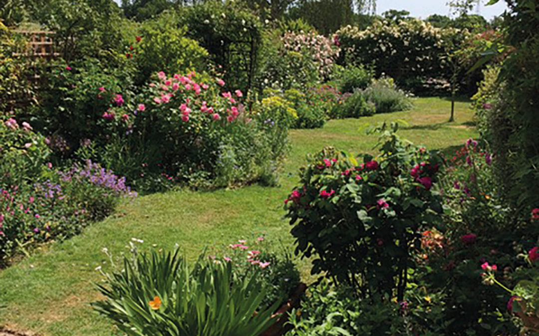 Visit these beautiful Dulwich gardens and support local charity Link Age Southwark