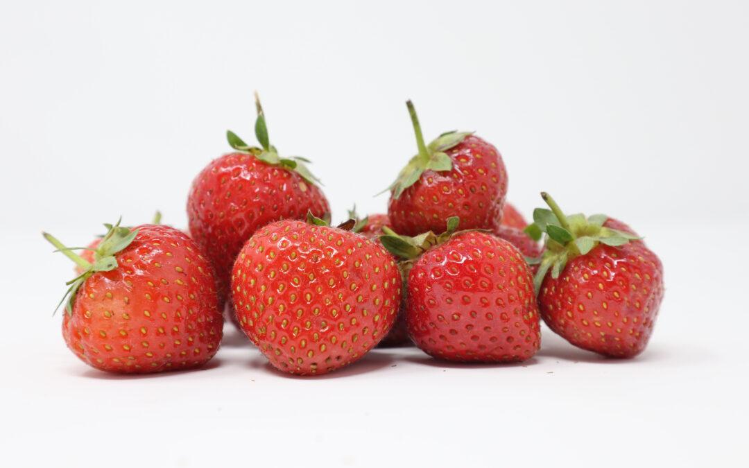 Roasted Strawberries & Elderflower Pana Cotta Recipe
